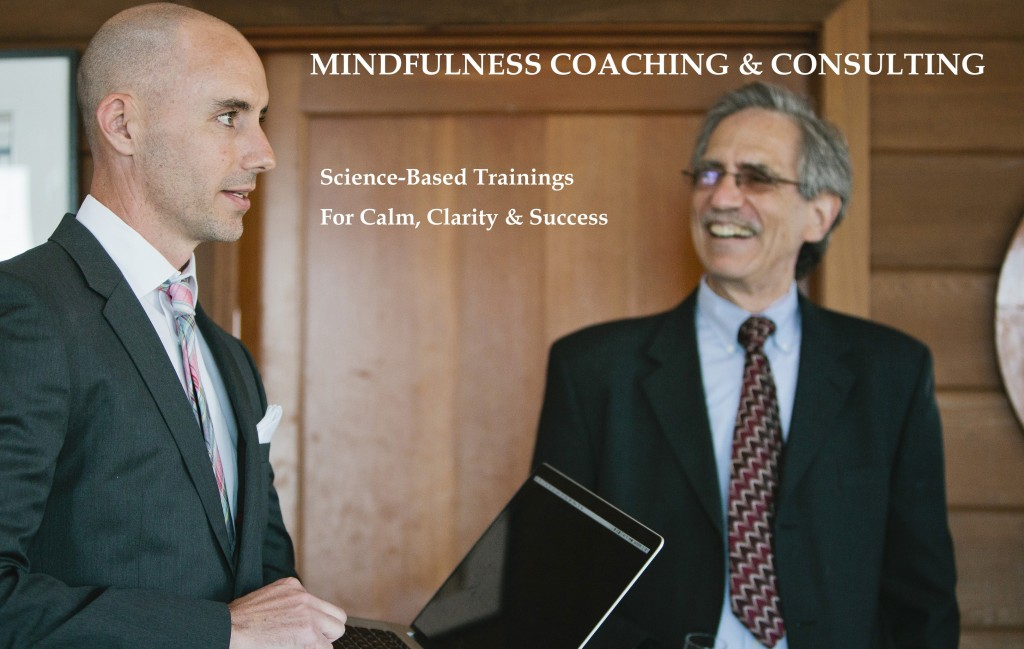 Sean Fargo mindfulness coaching and consulting
